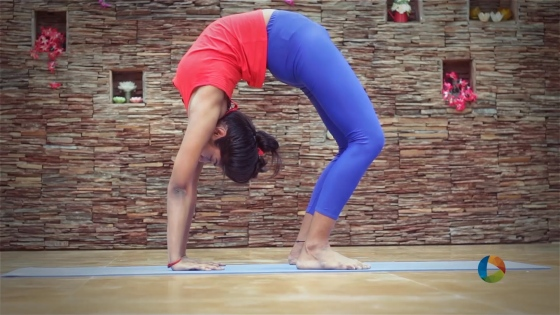 1_yoga_chakrasana_02july-mp4-still001